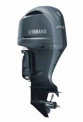 Yamaha F 250 DETX